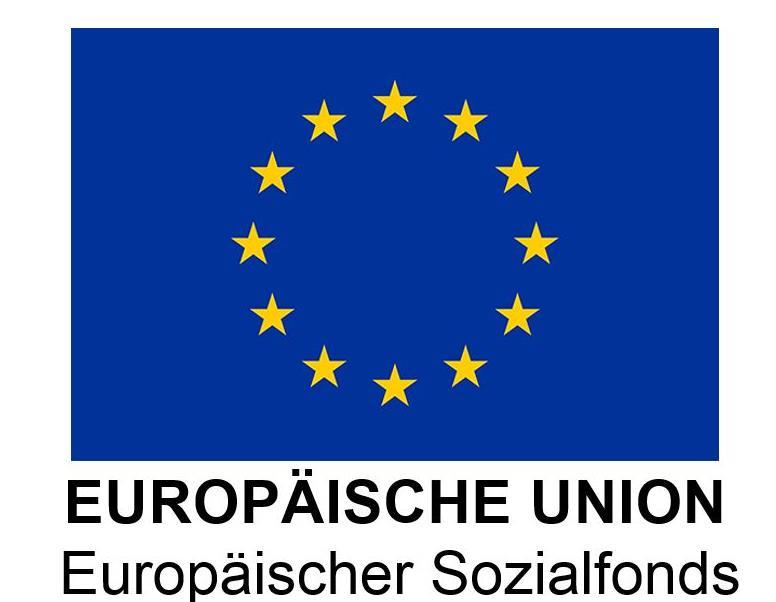 Sozialfonds EU